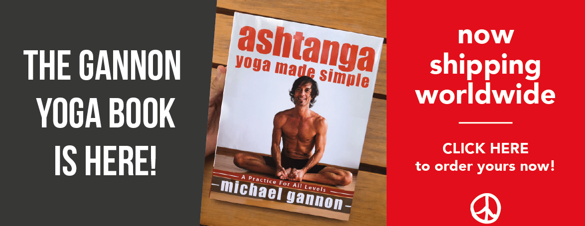 Gannon´s New Book!                    FREE BONUS: Full Vinyasa Video!